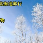 冬の北海道で雪まつりで何を着たらいい?雪道の滑らない歩き方